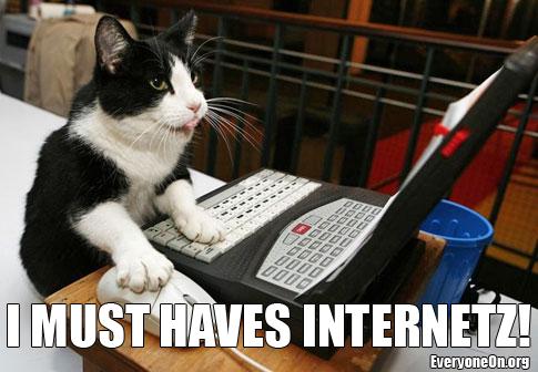 cat-computer_meme_english