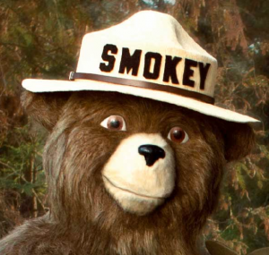 USDA Forest Service – Smokey Bear