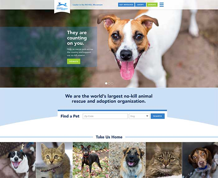 Animal League website